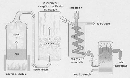 distillation base-autonome-durable