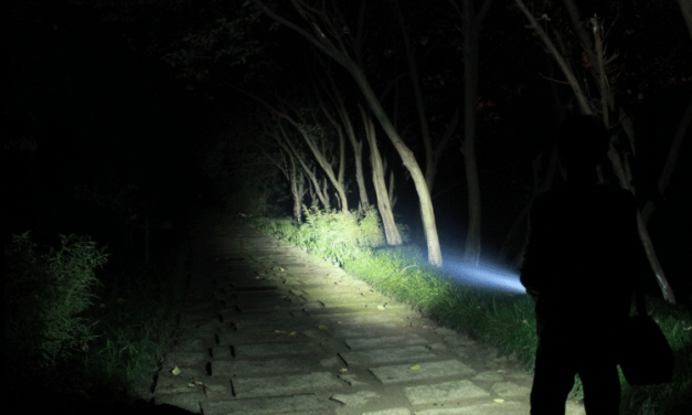 Survie : les solutions d'éclairage